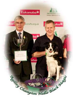 Will Rolfe and Ag Ch Nedlo Black Magic (Scoot) winners